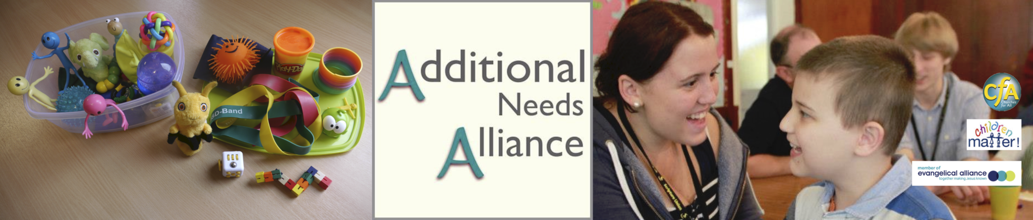Additional Needs Alliance